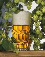 Helles (pale lager) in tankard, hops