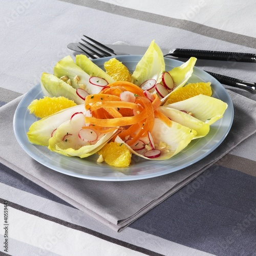 Chicory and vegetable salad with orange segments
