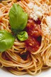 Spaghetti with tomato sauce, basil and cheese