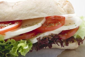 Tomato and mozzarella sandwich