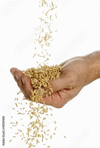 Someone pouring oats into their hand
