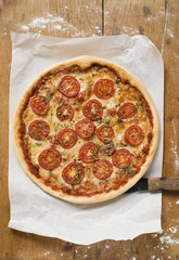 Cheese and tomato pizza with oregano on paper