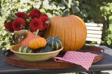 Pumpkins, squashes and flowers on table in the open air