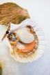Scallop, opened, on ice