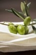 Olive sprig with green olives on linen cloth
