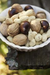 Walnuts, chestnuts and peanuts in white dish
