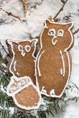 Gingerbread owls and acorn