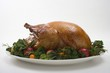 Roast turkey garnished with fruit and herbs