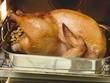 Stuffed roast turkey in the oven