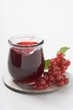 Jar of redcurrant jelly, redcurrants beside it