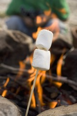Marshmallows on stick in front of camp-fire, people in background
