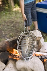 Grilling fish over camp-fire