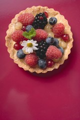Mixed berry tartlet (overhead view)