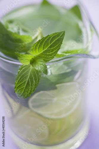 Mojito with lime and fresh mint