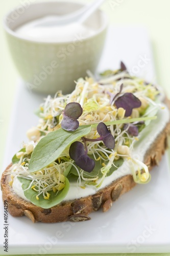 Yoghurt, sprouts and herbs on slice of bread