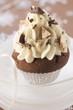 Chocolate cupcake for Christmas
