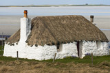 Building, Cottage, Thatched, White walls