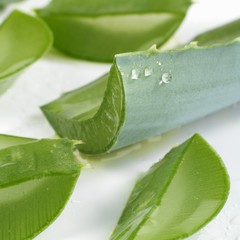 Aloe vera leaves, cut into pieces (close-up)