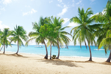 beach of Catalina island in Dominican republic