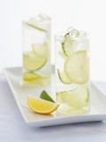 Two Glasses of Seltzer Water with Lemon and Lime Slices