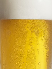 Glass of beer with condensation (close-up)