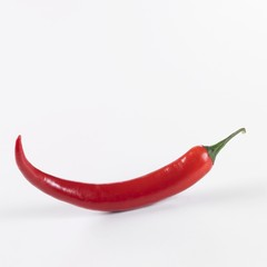 A red chilli against a white background