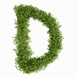 The letter D in cress