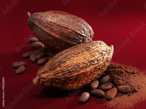 Cacao fruits, cocoa beans and cocoa powder