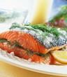 Salmon on salt with dill
