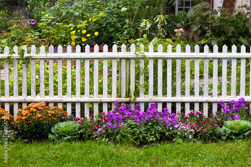 White picket fence surrounded by garden flowers in yard - 40567443