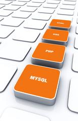 3D Pads Orange - HTML CSS PHP MYSQL 9