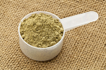 scoop of hemp protein powder