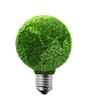 Green leaf Earth bulb