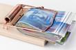 Schweizer Franken in Mausefalle