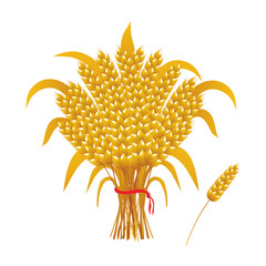 vector golden sheaf of wheat, ear of wheat