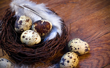 easter feather eggs