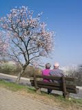 Altes Ehepaar auf Parkbank