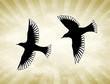 Golden Sun Birds