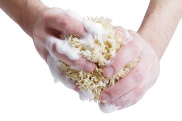 bathing sponge in hands