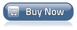 "Bar-shaped Button ""Buy Now"""