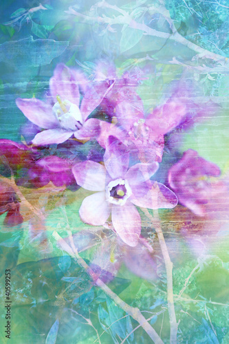 Natural flowers grunge beautiful, artistic background