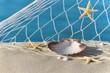 Maritimes Strand-Stillleben mit Muscheln und Seesternen
