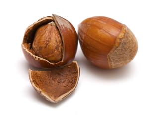 two hazelnuts