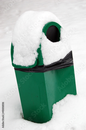Dog's toilet in snow