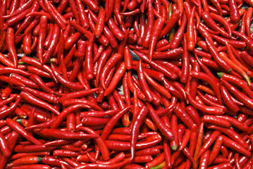 Spicy red Thai pepper chillies