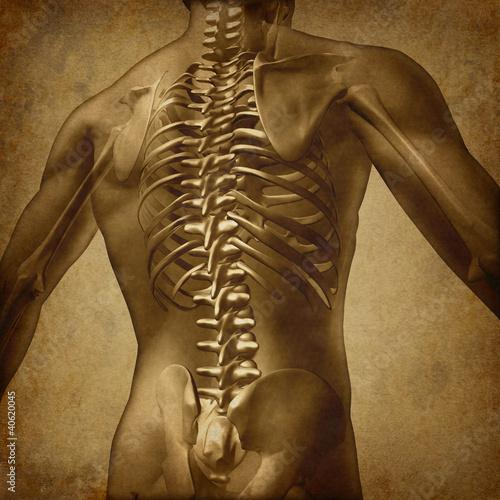 Human Back Grunge Texture