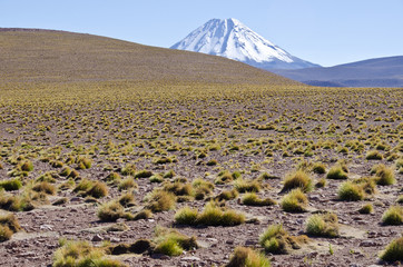 Snow Capped Volcano in the Atacama Desert Chile