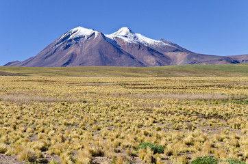 Snow Capped Mountain of the Andes in Atacama Desert Chile