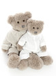 Two teddybears