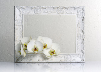 beautiful white frame